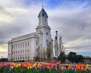 cedar city temple spring flowers